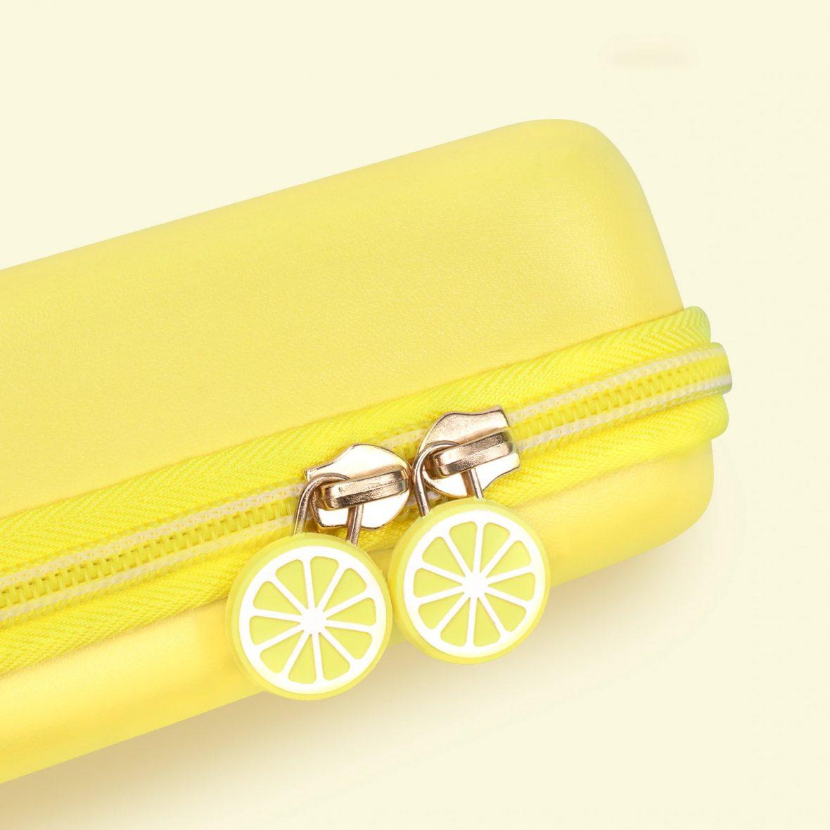 ute-lemon-storage-bag-cover-case-for-ni_description-2